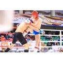 Бойцы из бердского КСЕ «Авангард» - триумфаторы Олимпиады боевых искусств