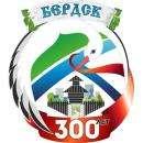 Заявила о нарушении авторских прав разработчик эмблемы 300-летия Бердска