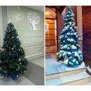 Фирмы «Сибирское здоровье» и «Crona» в Бердске уже приготовились к Новому году