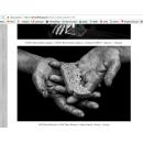 Снимок, получивший награду международного конкурса