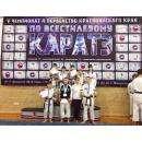 26 медалей по всестилевому каратэ завоевали спортсмены из Бердска