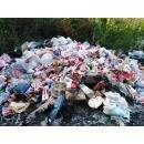 Метровая куча мусора в роще в Северном микрорайоне