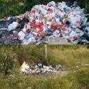 Специальные службы вывезли метровую кучу мусора