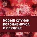 Число заражения COVID-19 в Бердске достигло 418 случаев