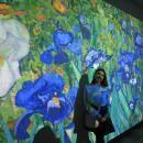 В Бердске до 28 апреля работает необычная мультимедийная выставка «Винсент Ван Гог»