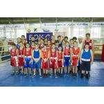 Семь золотых и 15 серебряных медалей завоевали юные боксеры клуба «Кристалл»