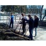 Студенты бердского политеха в день субботника привели в порядок свою территорию