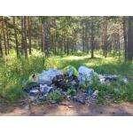 Мы задолбались таскать ваш мусор - из леса в город!