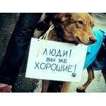 Фото Zverideti.ru