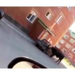 Бык крушил машину в Бердске. Фото - кадр из видео.