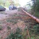 Ураганный ветер за полчаса превратил Бердск в разрушенный город