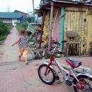 На голову 2-летней девочки упала ветка тополя, обломленная ураганом в Бердске (видео)