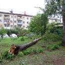 Штормовой ветер 13 августа обесточил часть Бердска