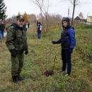 Юные патриоты Бердска высадили липы в парке Победы