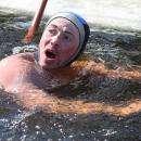 В честь дня рождения президента РФ морж из Бердска переплывет реку Обь