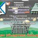 В Бердске 21 февраля пройдет чемпионат по бильярду «Комбинированная пирамида»
