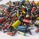 Ученики бердской школы №8 собрали 104 кг отработанных батареек