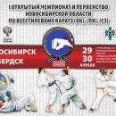 Первенство и Чемпионат региона по всестилевому каратэ пройдет в Бердске