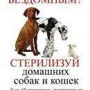 Стерилизуйте животных, если вы их действительно любите!