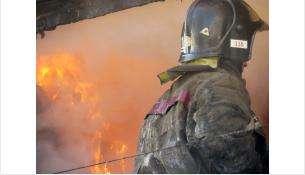 МЧС предупреждает бердчан: Ставьте в домах «будильники спасения»