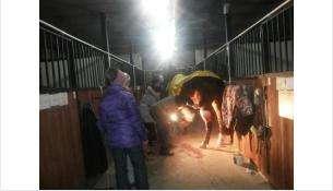 Год назад, 19 января, под тяжестью снега рухнула крыша манежа в конном клубе. Погибли люди и кони