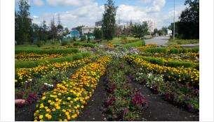 Парк Бердска - один из претендентов на федеральные деньги