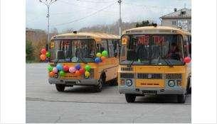 Во всех муниципальных автобусах Бердска проезд для детей будет бесплатный
