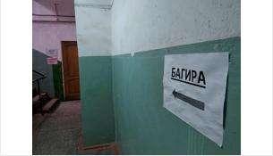 """Офисное помещение компании """"Багира-М"""""""