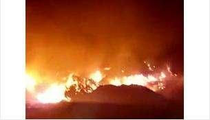 Пожар на свалке в Бердске 16 августа 2018 года
