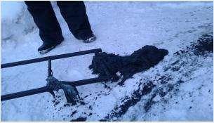 Ведро ветоши вытащили из канализации у коттеджей в Бердске