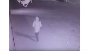 Напал на женщину и ударил ее по голове разбойник в Черепаново