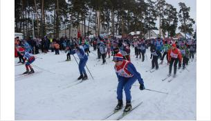 В «Лыжне России-2019» в Бердске участвовали около 800 человек