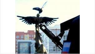 30-летие вывода войск из Афганистана отметят митингом в Бердске