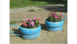 Виды растений и цветов для украшения Бердска не меняются несколько лет