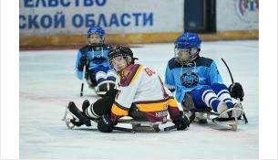 Учебные сборы двух следж-хоккейных команд региона пройдут в Бердске