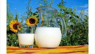 На 1,4 млн рублей мошенник из Бердска похитил молока у 59 селян