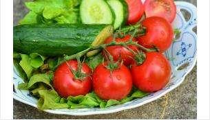 Резко подорожали огурцы и помидоры на рынках Бердска