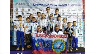 Призовые места заняли тхэквондисты из Бердска на турнире в Улан-Удэ