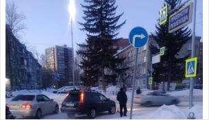 Две «Тойоты» попали в ДТП у пешеходного перехода в Бердске