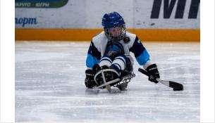 В сборную НСО по следж-хоккею входят бердчане