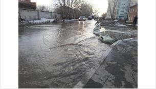 Талые воды могут затопить улицы и дворы Бердска
