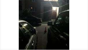 На 6-летнего мальчика наехал автомобиль «Хонда ЦРВ» во дворе в Бердске