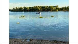 Ребёнок утонул в реке Обь