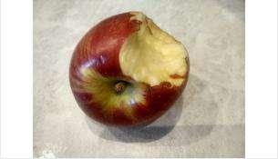 Яблоки в Бердске подорожали до 280 рублей за килограмм