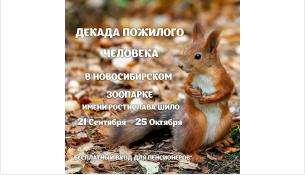 Акция продлится до 25 октября