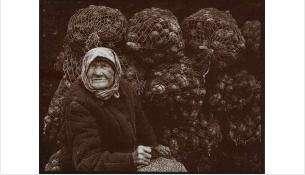 По Новосибирской области доля семей, которым хватает денег только на еду, доходит до 24%