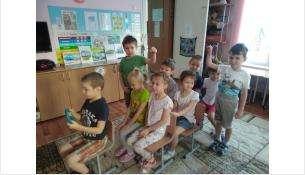 Урок по БДД в детском саду