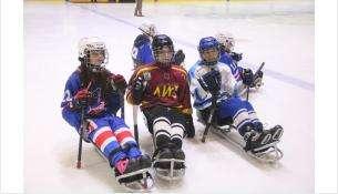 Межрегиональный турнир по следж-хоккею стартовал в Бердске