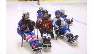 Межрегиональный турнир по следж-хоккею завершился в Бердске