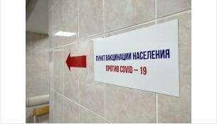 Пункт вакцинации жителей Бердска находится на ул. Пушкина, 172